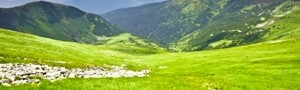 Scopri le Offerte per il Trenino Rosso del Bernina dell'Hotel Spol di Livigno