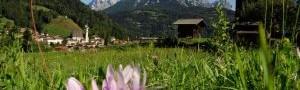 Per l'estate in montagna scegli Hotel Letizia di San Martino di Castrozza