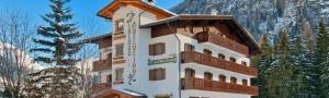 Per le feste in Trentino, fermati alla Cesa Edelweiss