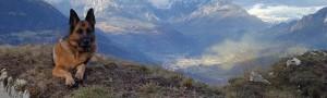 A giugno la montagna ti invita dalla Famiglia Taufer
